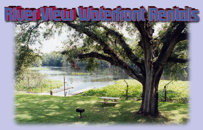 Dunnellon Rentals, Dunnellon waterfront lodging, Withlacoochee River rental